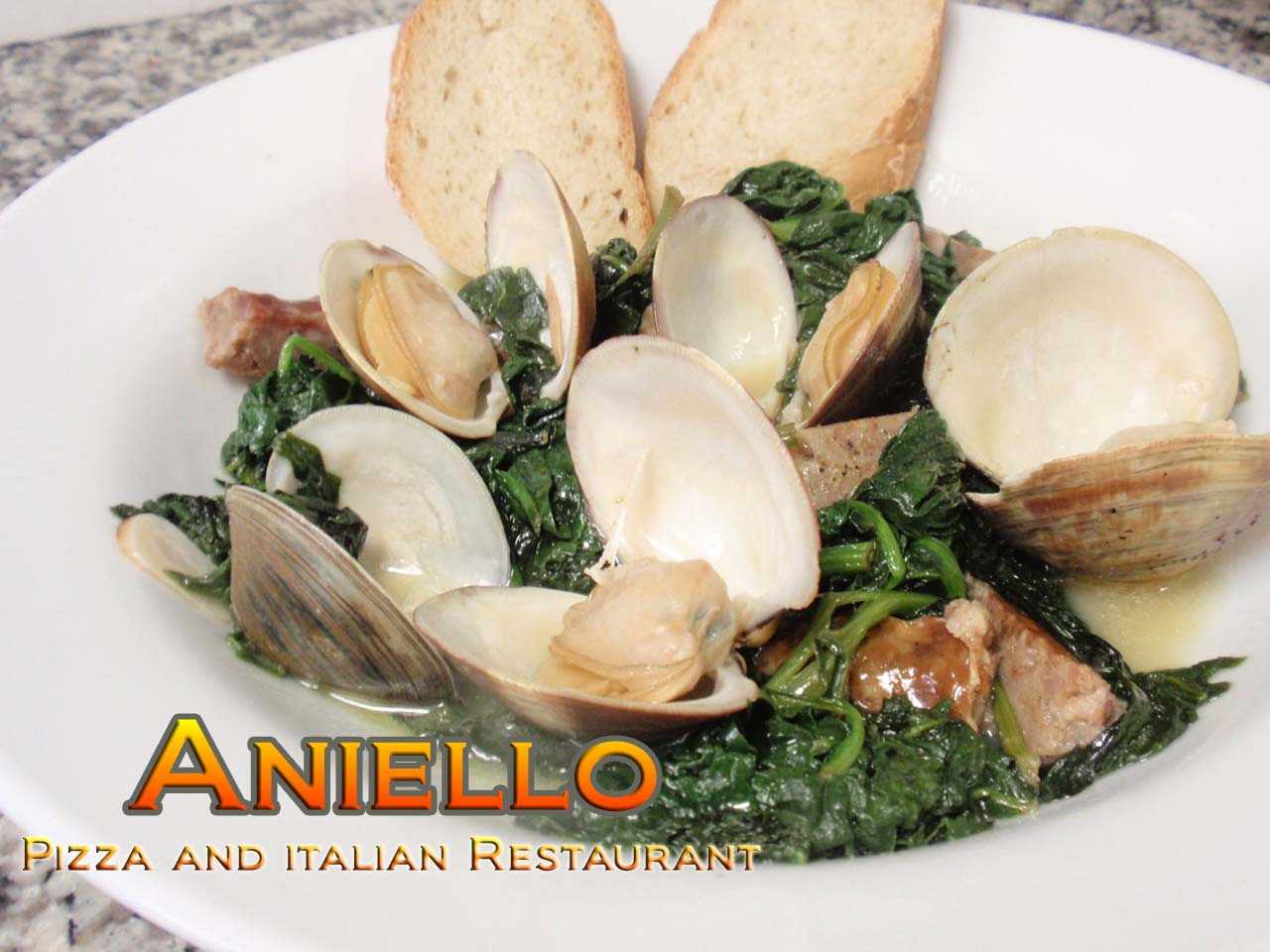 Aniello's Pizza and Italian Rest